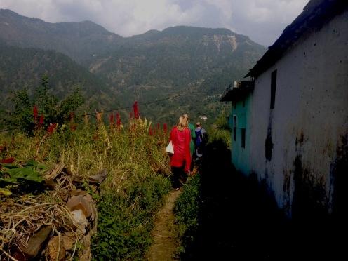 Vår promenad till kontoret. Den röda växten är en millet som heter Amarant.