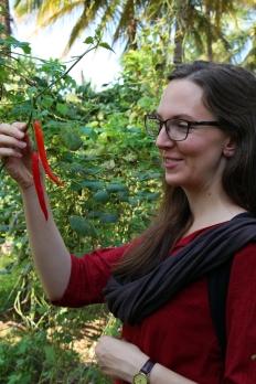 Kristina beundrar en ekologisk chili från en kollektiv odling