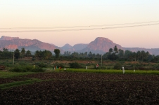 Ett fält i solnedgången