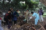 Saranyas kompost och kunskapshungriga paktikanter