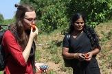 Solmogen, organsk tomat! Kristina, praktikant på DDS och Ranjanoyeki, programkoordinator hos Women's Collective