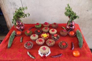 olika typer av bönor och millets bönderna odlar