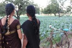 dotter och mor ser över blomkålsplantagen