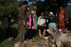 Dadi Asha styr upp kossornas fest. Från vänster: Rinku, Karin Fanny, Caroline, Linnea, chacha Devi, dadi Asha, didi Kala. Bild tagen av Varun.