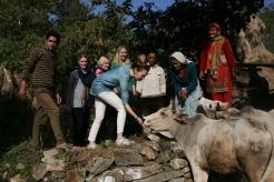 Dadi Asha styr upp kossornas fest. Från vänster: Rinku, Karin Fanny, Caroline, Linnea, ghacha Devi, dadi Asha, didi Kala. Bild tagen av Varun