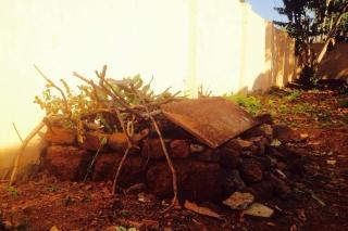 kompost_Louis