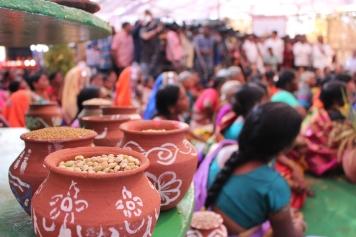 Frön, huvudstjärnan under festivalen för den biologiska mångfalden.